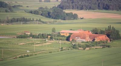 Mehr zu Pferdehof Ruhnau in Potzlow Abbau